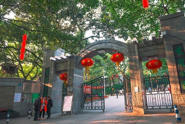 观赏重庆夜景的好去处—鹅岭公园,你了解多少?