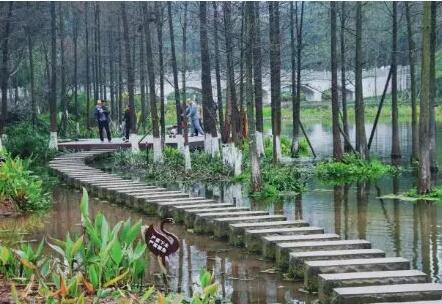 重庆这五大适合外出郊游的地点,你都知道吗